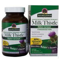 Milk Thistle-간건강회복